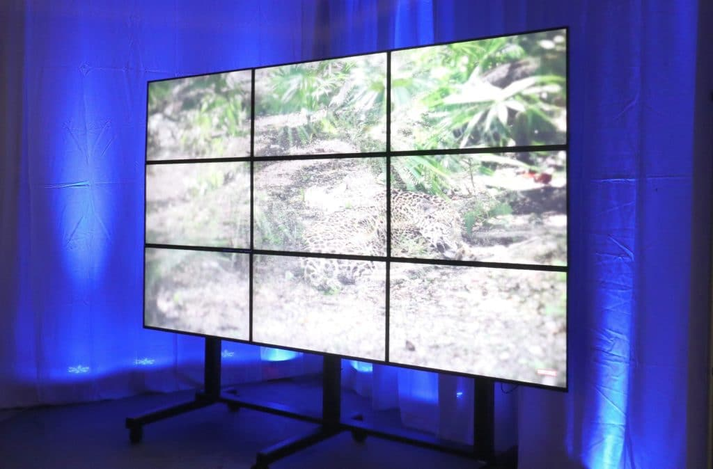 videowall, hd videowall, video wall rentals, big tv, big screen tv